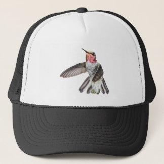 オスのアナのハチドリの帽子 キャップ