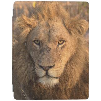オスのライオンのポートレート iPadスマートカバー