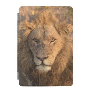 オスのライオンのポートレート iPad MINIカバー