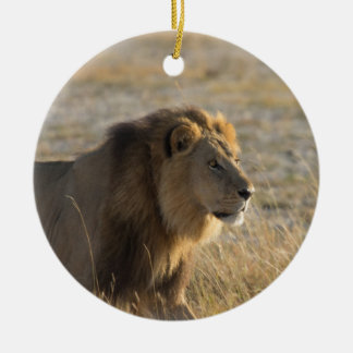 オスのライオン14ボツワナ セラミックオーナメント
