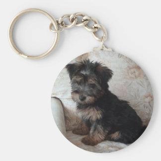 オスカーヨークシャテリアの子犬 キーホルダー
