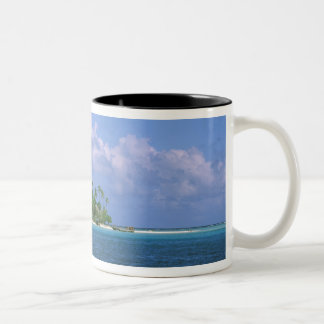 オセアニア、フランス領ポリネシア、タヒチ。 小さい ツートーンマグカップ
