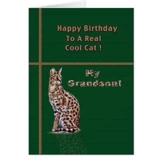 オセロットが付いている孫のバースデー・カード カード