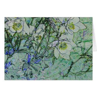 オダマキ(植物) カード