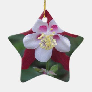 オダマキ(植物) セラミックオーナメント