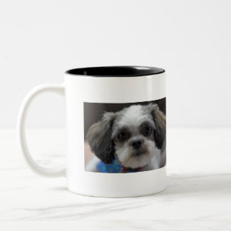オハイオ州のシーズー(犬) TZUそれはコーヒー時間です ツートーンマグカップ