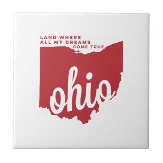 オハイオ州 の歌の叙情詩 のチェリーレッド タイル