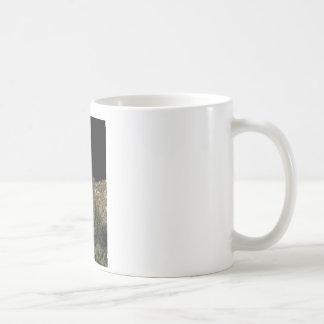 オバマのサボテン コーヒーマグカップ
