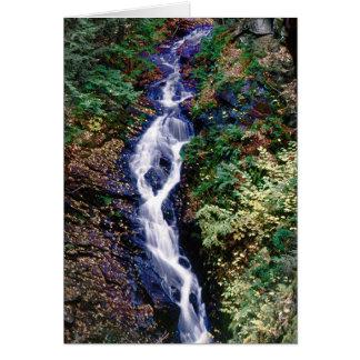 オパールの滝 カード