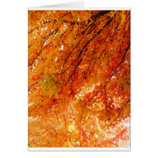 オマハ元のデジタルの芸術の秋の色 カード