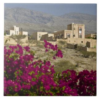 オマーンのHajar西部の山、Al Hamra。 町 タイル