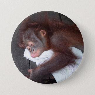 オランウータンのベビーの孤児の睡眠 7.6CM 丸型バッジ