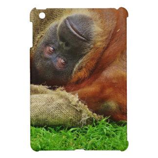 オランウータン iPad MINI CASE