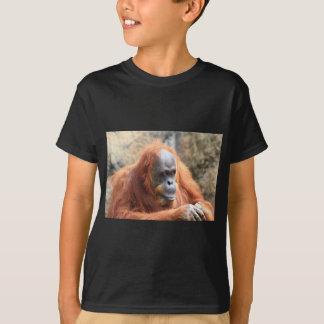 オランウータン Tシャツ