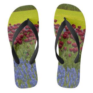 オランダの花 ビーチサンダル