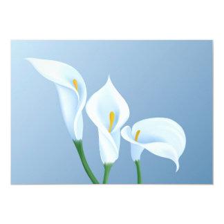 オランダカイウの花 カード