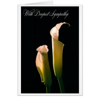 オランダカイウのLillyの双生児 カード