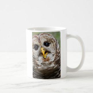 オリバーのフクロウのマグ コーヒーマグカップ