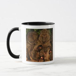 オリーブ色のヒヒ(Papioのanubis)の監視のグループ、 マグカップ