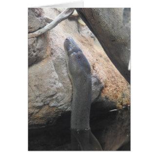 オリーブ色の大蛇の挨拶状 カード