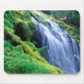 オレゴンの中央滝の委任状の滝 マウスパッド