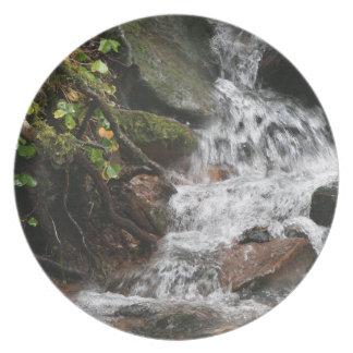 オレゴンの川の流れの太平洋の北西写真撮影 プレート