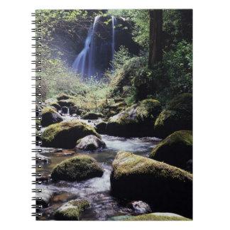 オレゴン、Siskiyouの国有林、オオシカの入り江 ノートブック
