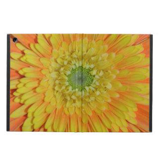 オレンジおよび黄色のガーベラの花