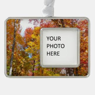 オレンジおよび黄色の秋の木の秋の写真撮影 シルバープレートフレームオーナメント