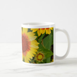 オレンジおよび黄色のechinaceaの花のプリント コーヒーマグカップ
