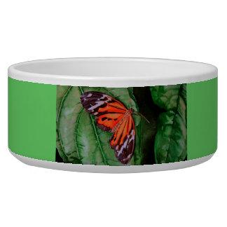 オレンジおよび黒いブラジルの蝶 犬の水皿
