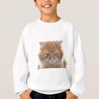 オレンジによって除去される虎猫猫 スウェットシャツ
