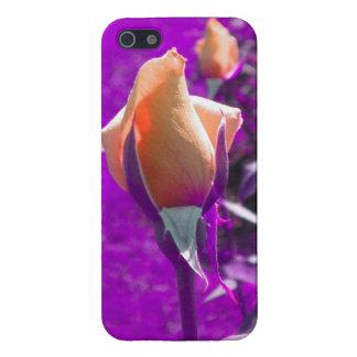 オレンジのばら色の芽のiPhone 5の箱 iPhone 5 Cover