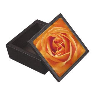 オレンジばら色のGiftbox ギフトボックス