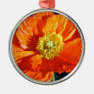 オレンジアイスランドのケシ シルバーカラー丸型オーナメント