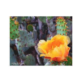 オレンジウチワサボテンのオプンティアのサボテンの花の写真 キャンバスプリント