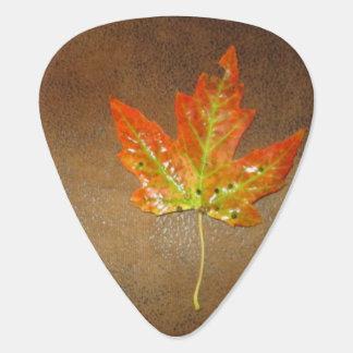 オレンジカエデの葉のギターピック ギターピック