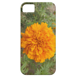 オレンジカーネーションのiPhone 5の穹窖 iPhone SE/5/5s ケース