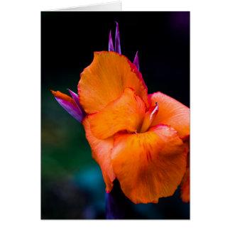 オレンジクレーン花 カード
