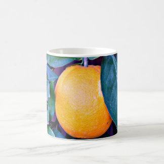 オレンジコーヒーカップかマグ コーヒーマグカップ