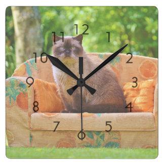 オレンジソファーのShorthairイギリスの猫 スクエア壁時計