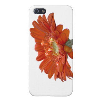 オレンジデイジーのガーベラの花 iPhone SE/5/5sケース