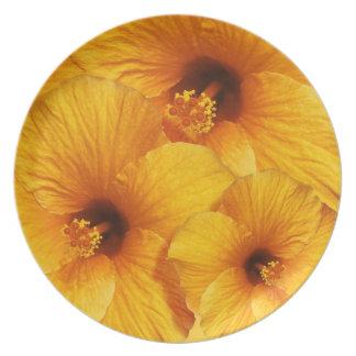 オレンジハイビスカスの花のプレート プレート