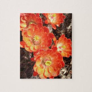 オレンジハリネズミサボテンの花のパズル ジグソーパズル