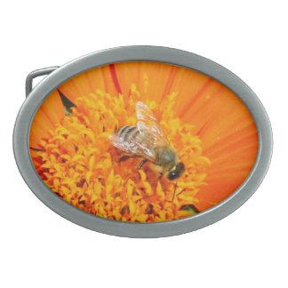 オレンジバックルの蜜蜂 卵形バックル