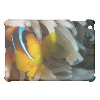 オレンジピエロの魚 iPad MINIケース