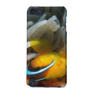 オレンジピエロの魚 iPod TOUCH 5G ケース
