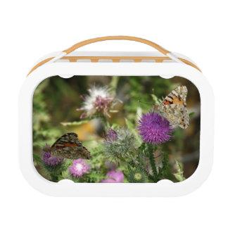 オレンジブラウンOrabgeの蝶自然のランチボックス ランチボックス