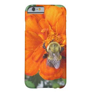 オレンジマリーゴールドの蜂の花 BARELY THERE iPhone 6 ケース