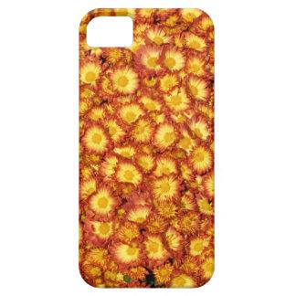 オレンジミイラ iPhone SE/5/5s ケース